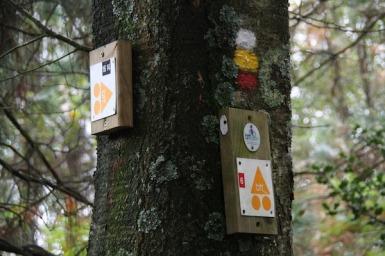 señalizacion de rutas (2)