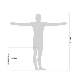 human-measurements_es